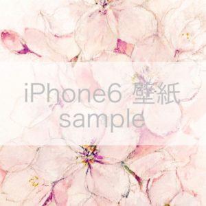 image-181