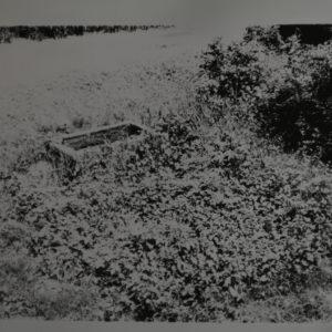image-1404