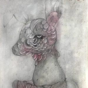 image-1347