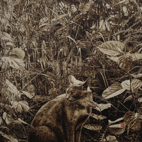 藪猫(やぶねこ)