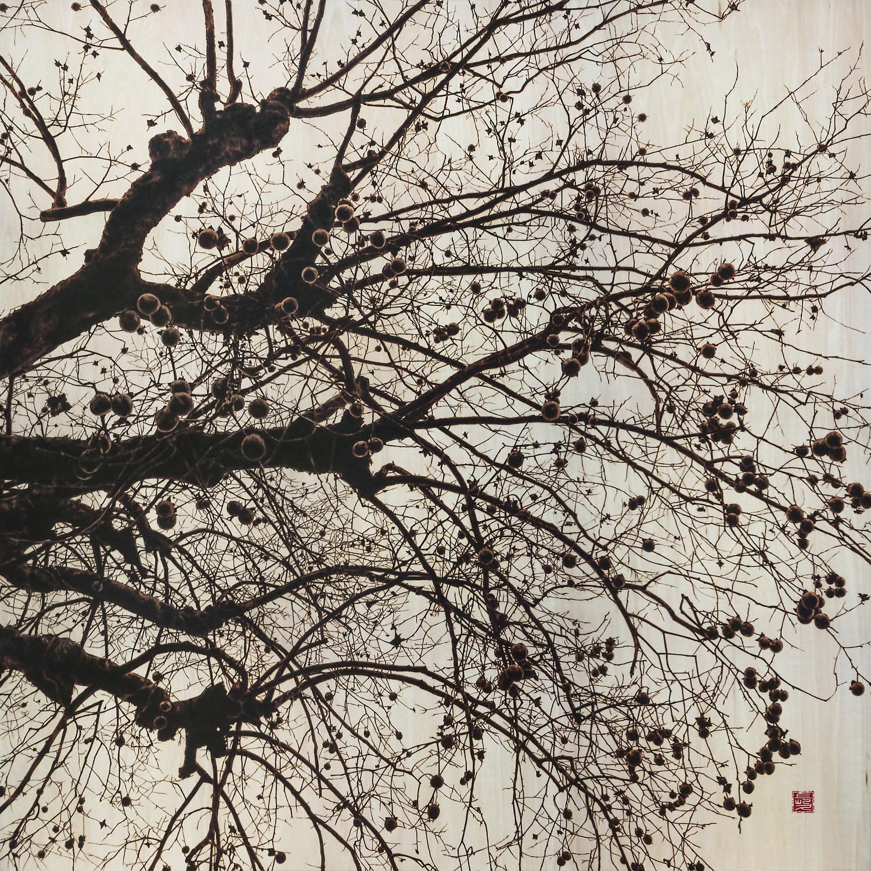 大樹奔流_星降る里(たいじゅほんりゅう_ほしふるさと)