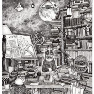 天文学者の猫