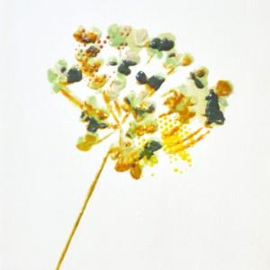 Nira_flower