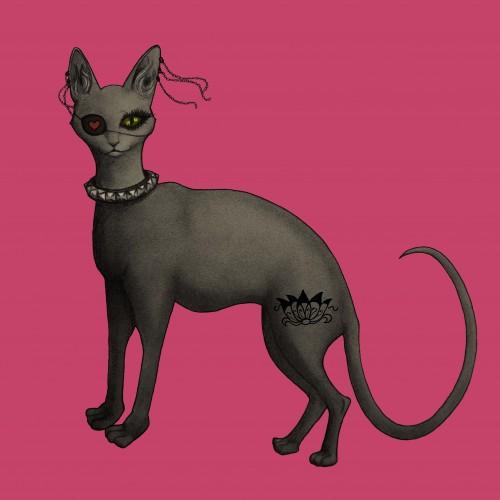 ANIMAL×ROCK_the cat